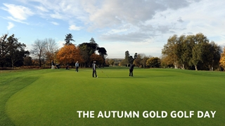 Autumn Gold Golf Day 2013